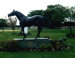Red Rum statue, in the Aintree Racecourse